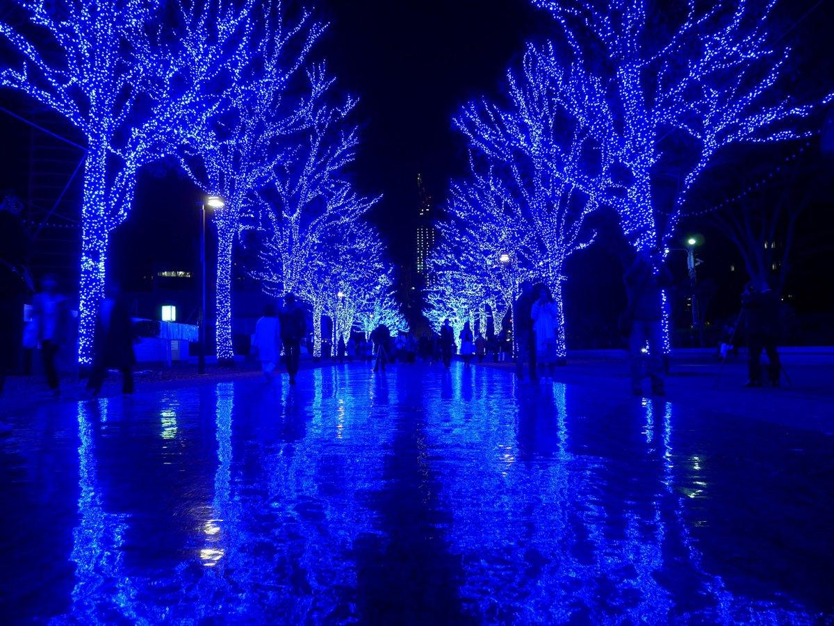 ごめんなさい! 今回は全然無かったので二年分まとめてです!  1.渋谷青の洞窟 2.厳島神社大鳥居 3.目黒川の夜桜 4.SHIBU NIWA  #2019年自分が選ぶ今年の4枚 #2018年自分が選ぶ今年の4枚 #ファインダー越しの私の世界  #写真好きな人と繋がりたい https://t.co/IzzyaS2F4y