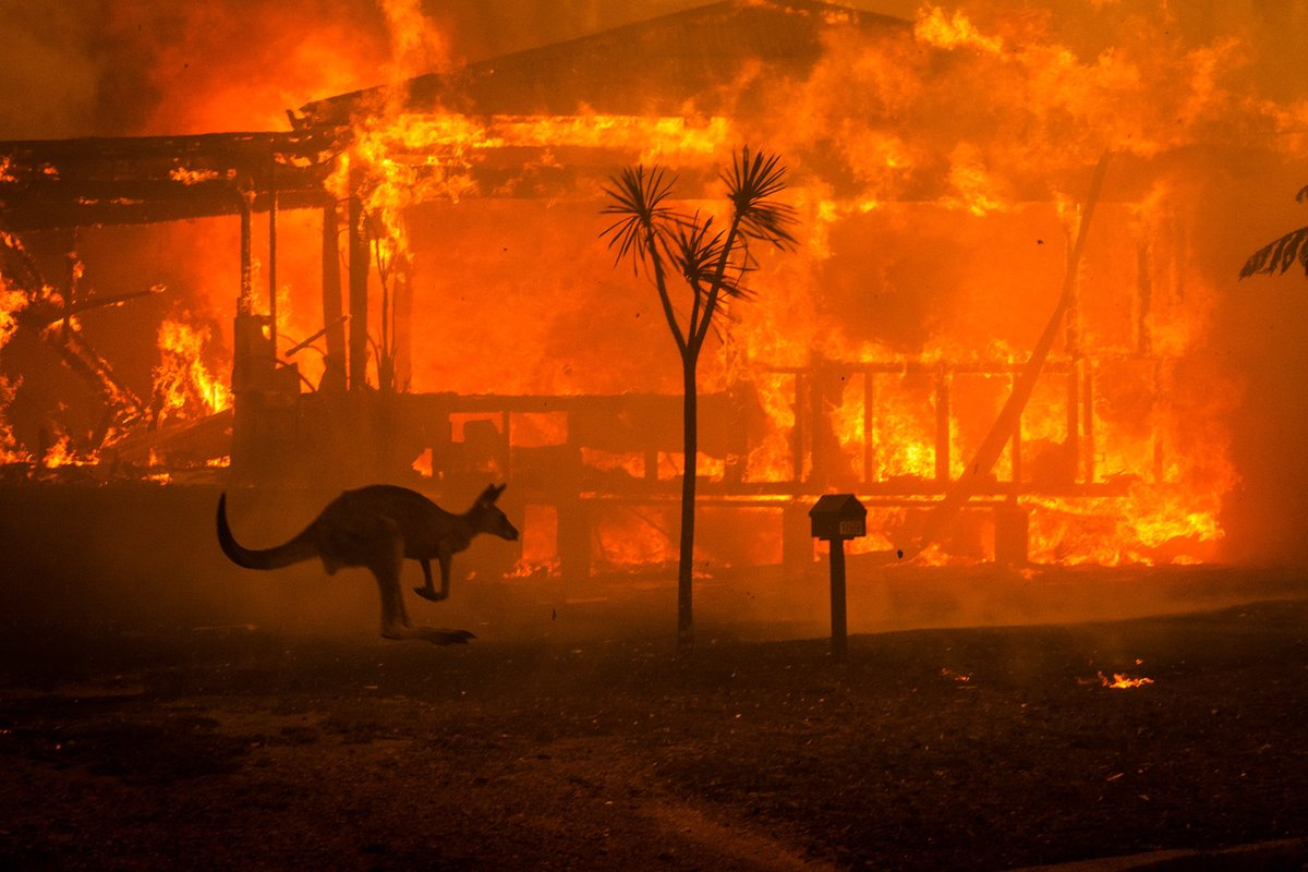 My last day of the decade felt like the apocalypse. Been covering the Australian bushfires for the last 6 weeks, but haven't seen anything like yesterdays fire that decimated the town of Conjola, NSW. #bushfirecrisis #AustralianBushfires #NSWisburning work for @nytimes
