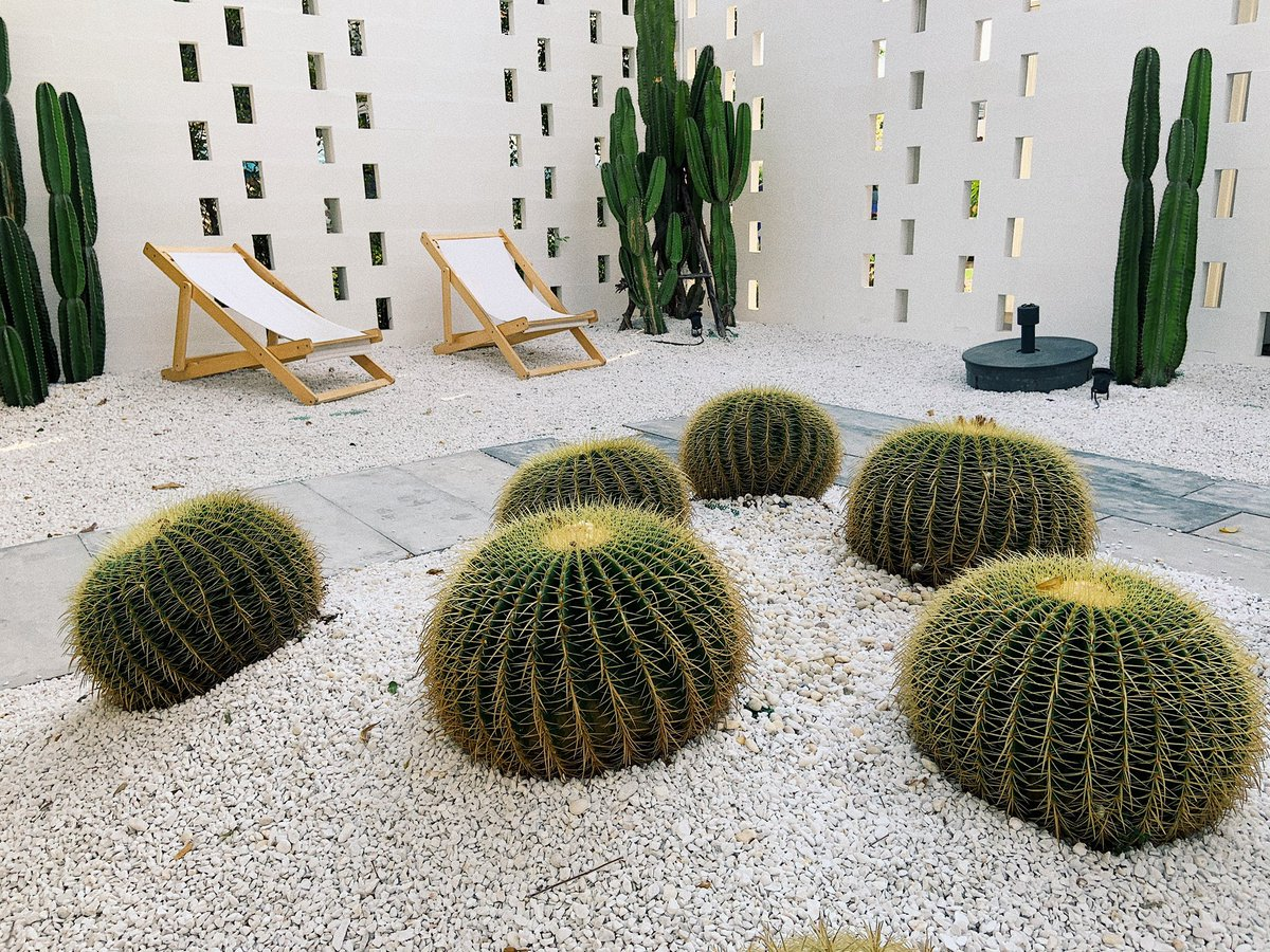 "Sydney on Twitter: ""ร้านน่ารักอีกแน้ว Breeze Box Cafe x Cactus 🌵พิกัด  จอมเทียน พัทยา… """