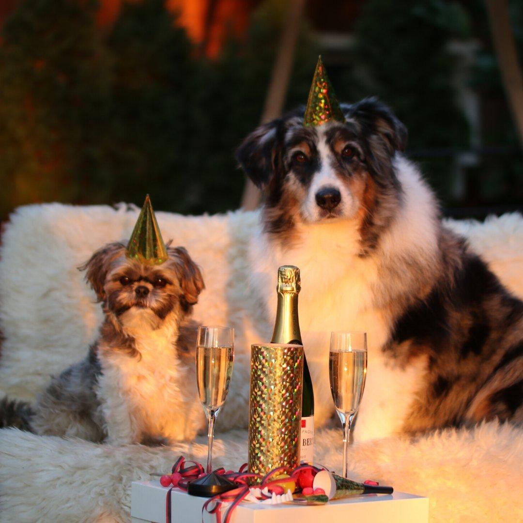 Wishing you a happy and healthy New Year! http://bit.ly/34ACmiR#sheerscience #newyear #2020 #happyholidays #holidaylook #holidayready #naturalskincare #selfcare #plexaderm #crueltyfree #powerswabs #dekliderm #kerafy #goflopic.twitter.com/ByzHURFCbl