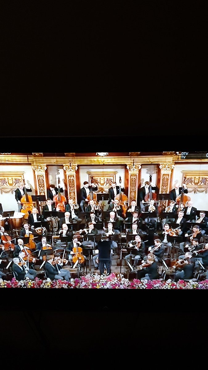There's no match to the #Neujahrskonzert in #Wien! What a dream would be for me to attend at least once... #ConcertoDiCapodanno #Neujahrskonzert2020pic.twitter.com/vNMRQquKwX