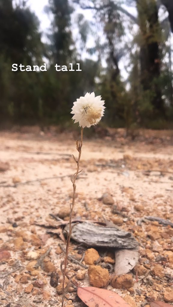 Stand tall, even if you stand alone...