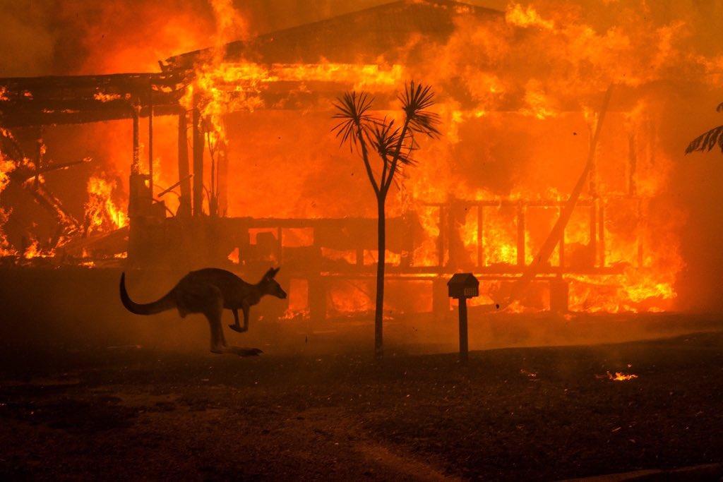 Katastrofalni požar u Australiji - Page 4 ENQGznsUYAAno0D