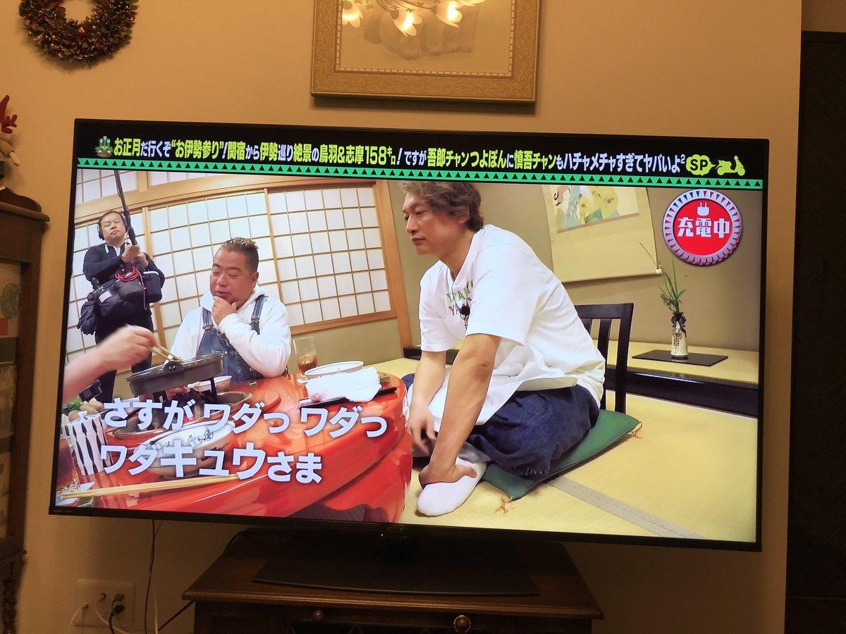 きん tv わた