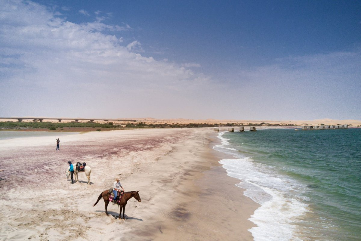 For those who love horses and adventure, its here in #Namibia #ridingsafari @FarAndRide