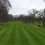 Image for the Tweet beginning: Tees looking tidy after a