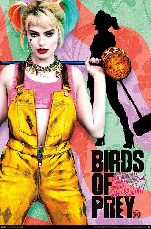 Creatieve Birds of Prey posters