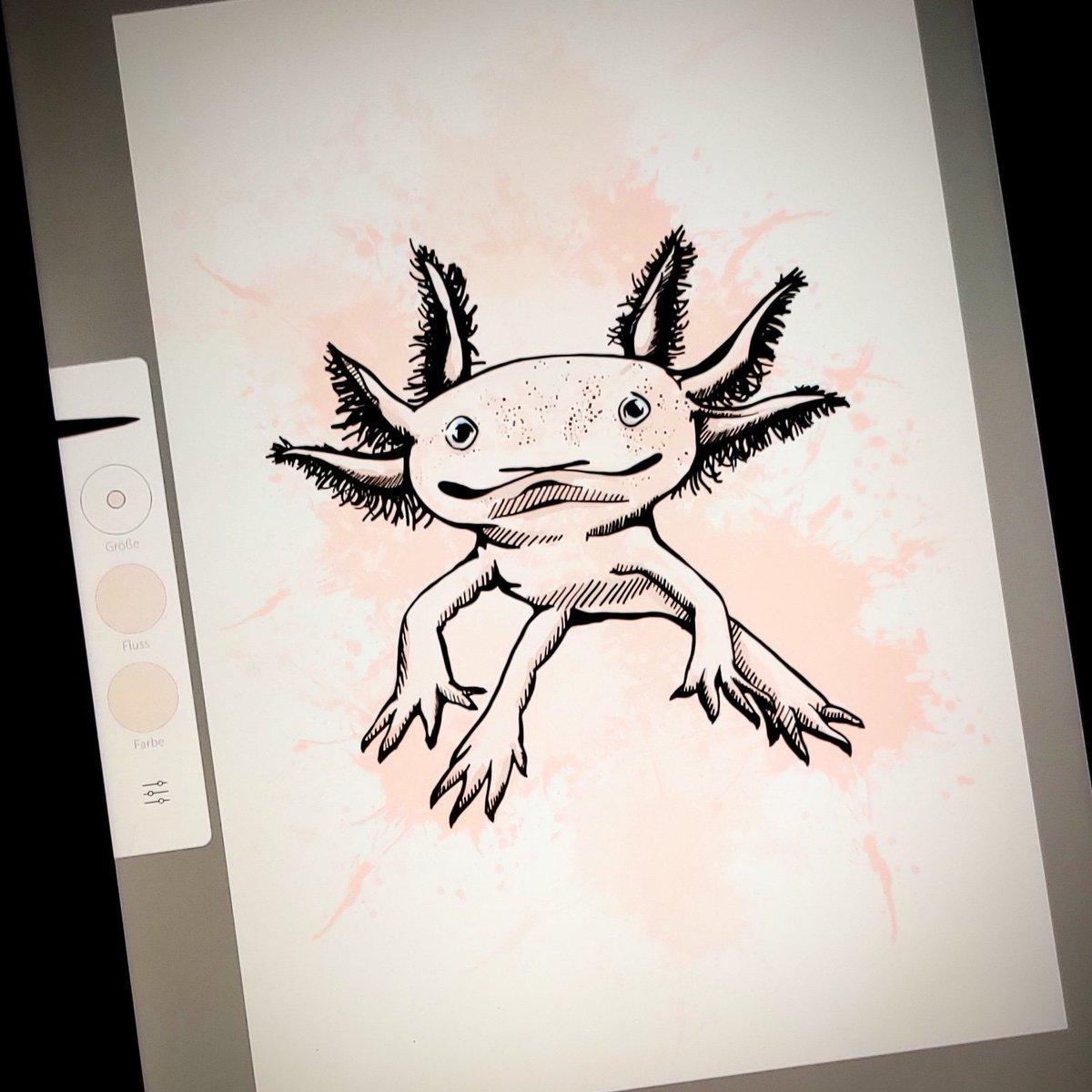 #artchallenge ... Leider nicht im Stream gezeichnet  den isisnedjem schlabber-rumgammel-look wollte ich euch nicht antun  dafür hier jetzt das fertige skribble: ein Axolotl #sketches #zeichnen #photoshopsketch #digitalzeichnen pic.twitter.com/kzdSMBUeBl