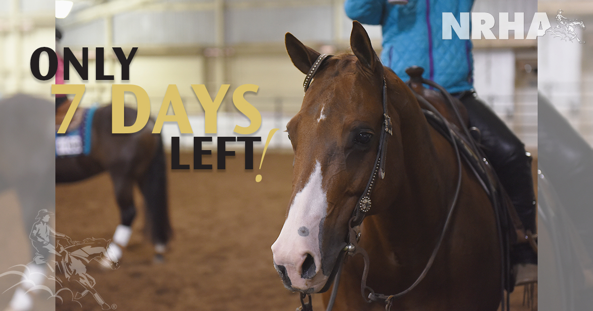 Only seven more days left to get your NRHA Futurity nominations in: http://bit.ly/NRHANomination #NRHA #Reining #SlideOfYourLife #ReiningHorse #RespectTheHorseRespectTheSport #Futurity #Nominationspic.twitter.com/RhyajVG55B