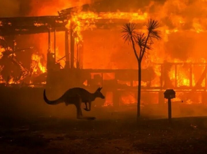 In one of the largest evacuations in Aus history, tens of thousands were urged to flee as warnings of hot weather. 500 million animals are killed among them 8000 koalas. the worst of all is that it does not seem to have a short-term solution.  #ClimateEmergency #prayforaustralia https://t.co/pijytaPWWU