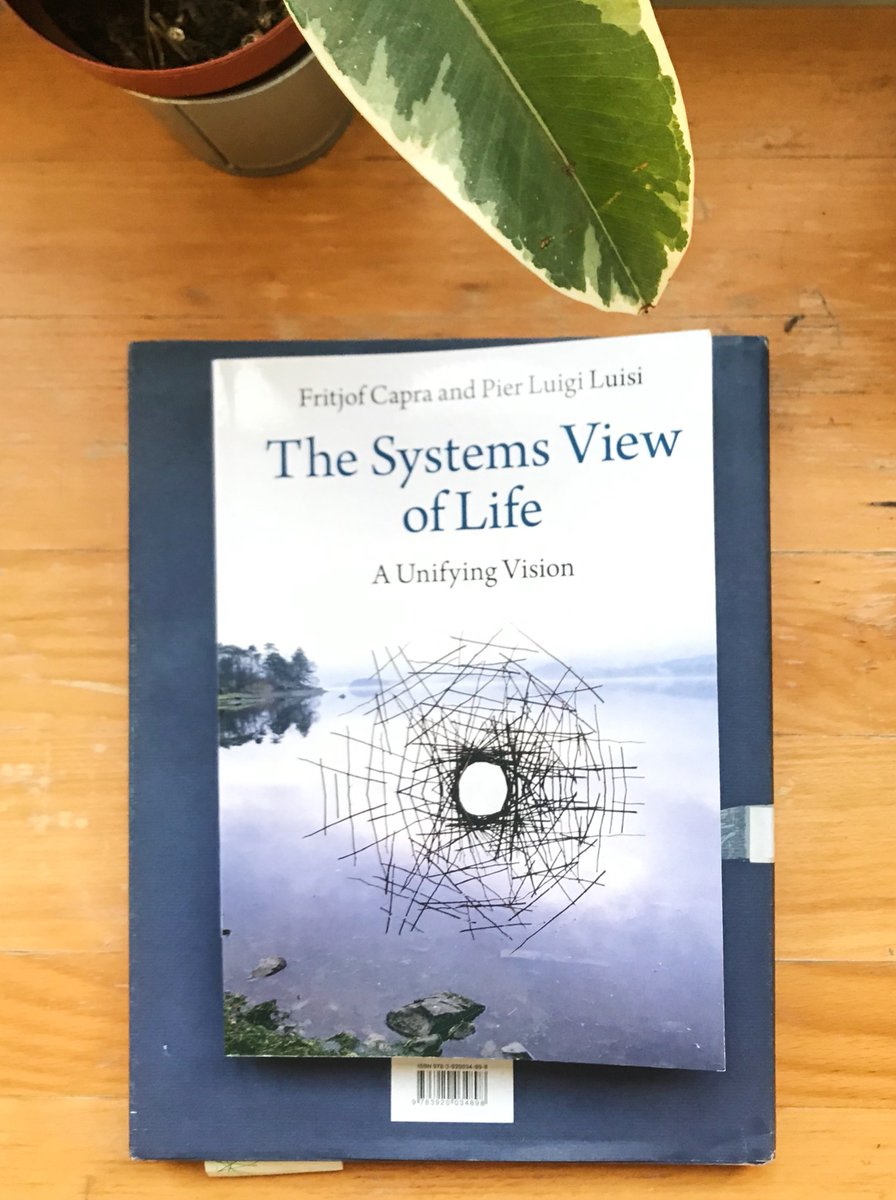 The ideal book to start the new decade. We need more systems thinking in the world if we want to save ourselves.