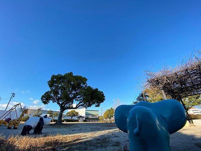 #いい天気 だけど、めっちゃ寒い((((;´•ω•`)))ブルブル  #イマソラ #いまそら #ノンフィルター #ノーフィルター #青空 #あおぞら #bluesky #空 #そら #sky