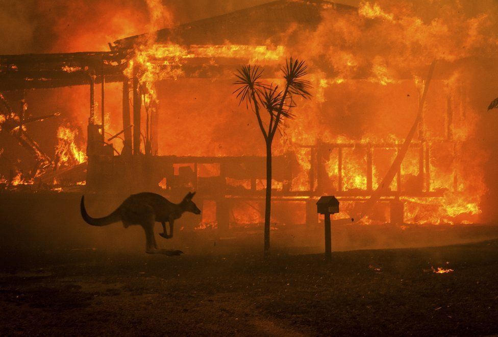 Every jurisdiction on the planet'll get hit like Australia. No jurisdiction can avoid catastrophic climate change. The question is whether you'll only start caring/acting when it's your turn. The question is about not only your morals but also your intelligence /3  #AustraliaFires