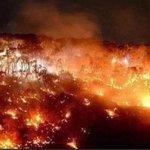 あまり報道されないけど。オーストラリアの火事がやばすぎる。宇宙からの写真もえぐい。