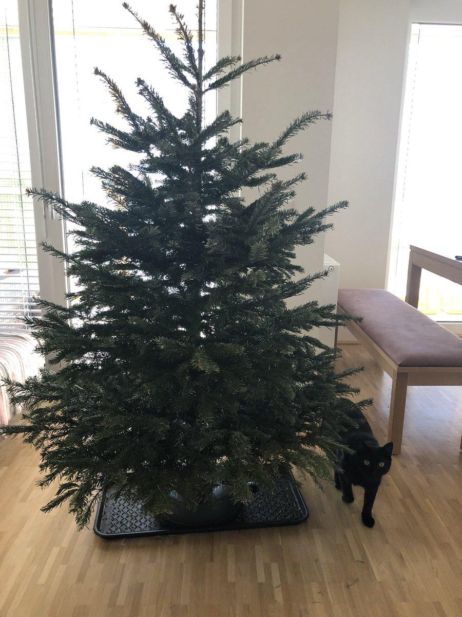 Das war's... #Weihnachten2019 ist offiziell beendet. Und schön war's! pic.twitter.com/6CvYV9Bjgb