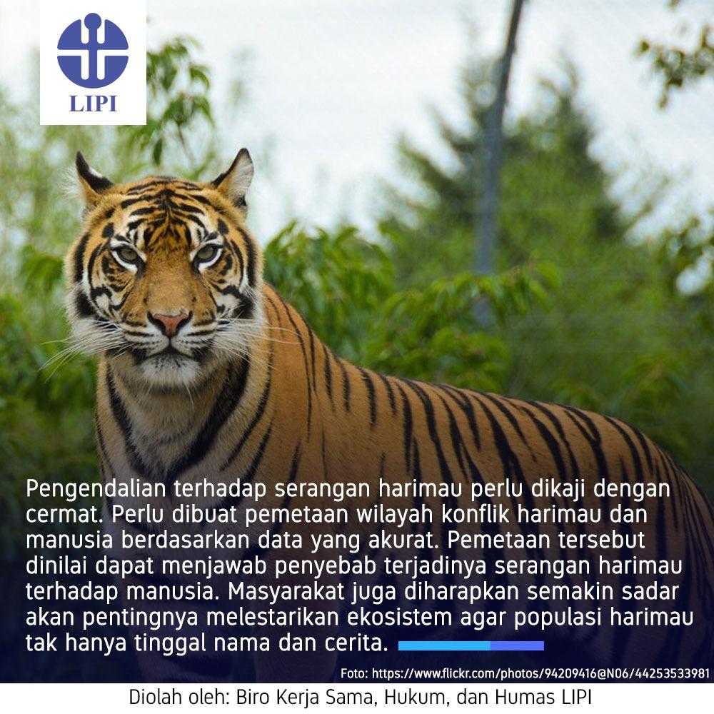 Lipi On Twitter Lipipedia Jaga Keseimbangan Ekosistem Hutan