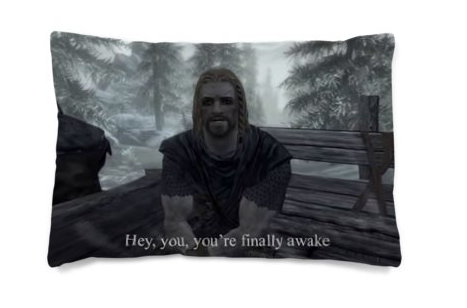 One of the most interesting designs we've come across, who wouldn't want to wake up again and again to this? https://www.bagsoflove.co.uk/products/bedding/pillow-cases.aspx … #skyrim #skyrimmeme #custompillow #pillowcase #customdesign #design #memespic.twitter.com/z8tysqYcRp