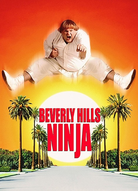 "It's time for Martial Arts Movie Mayhem This month we're watching ""Beverly Hills Ninja"" on Saturday January 11 from 2-4pm. All are welcome but seating is limited; movie is rated PG-13.  #beverlyhillsninja #movie #martialarts #actionmovie #dobbsferry #dfpl #library #librariespic.twitter.com/gxItmfhkqm"