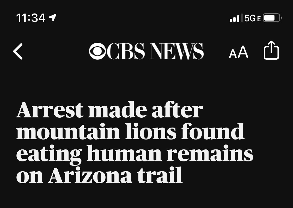 did... did they arrest the mountain lions