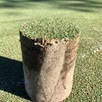 Image for the Tweet beginning: We had a DryJect demo