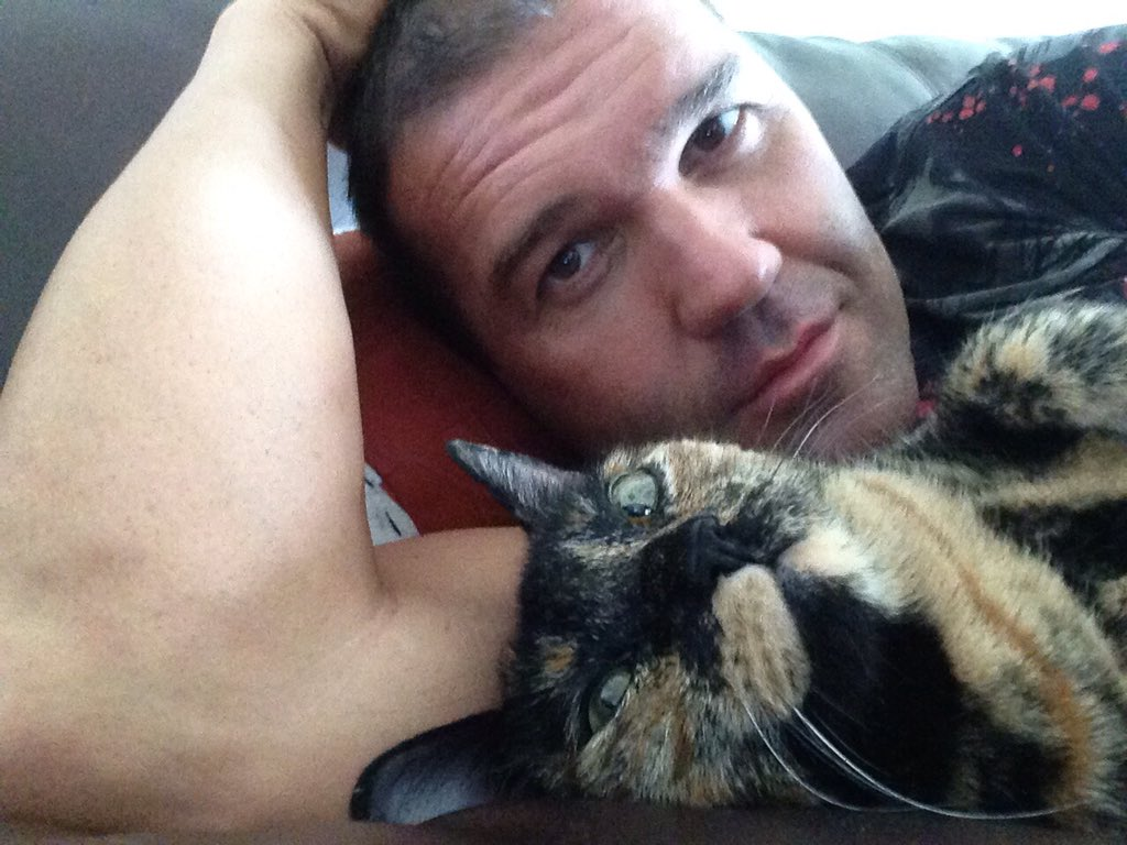 Image result for frankie kazarian cat