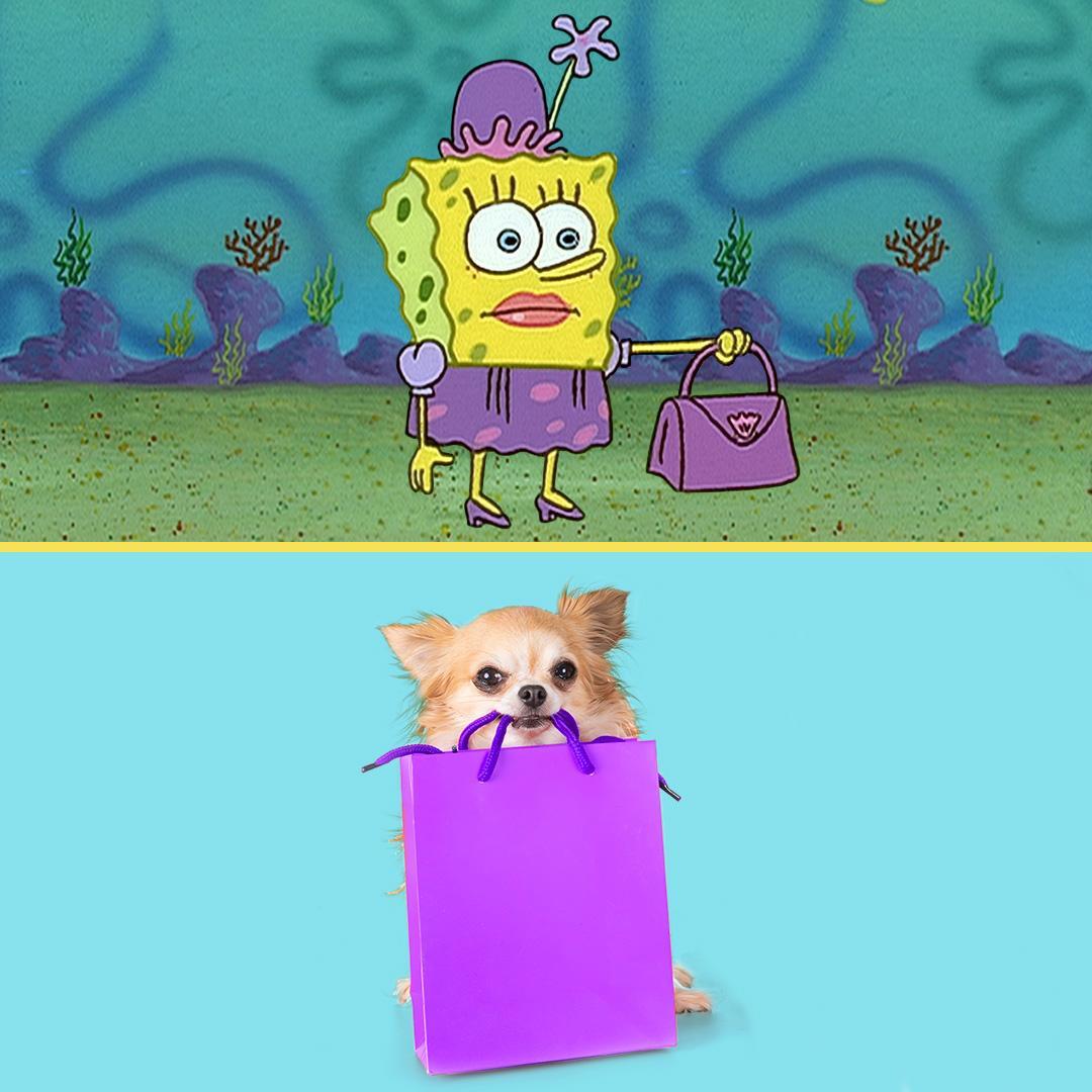 Spongebob At Spongebob Twitter