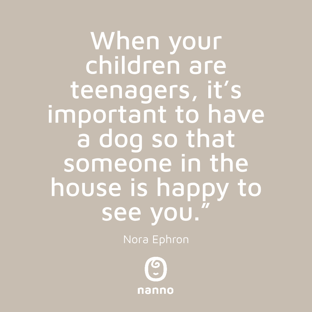 """""""When your children are teenagers, it's important to have a dog so that someone in the house is happy to see you."""" - Nora Ephron . . . #nanno #momlife #babysitter #babysitting #caregiver #nannylife #mominspo #ig_motherhood #motherhoodrising #quotes #momquotes #parentingquotespic.twitter.com/xMqDFIFp9J"""