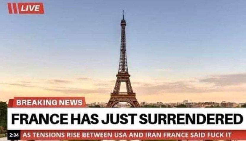 После первой мировой бойни французы страшно поумнели