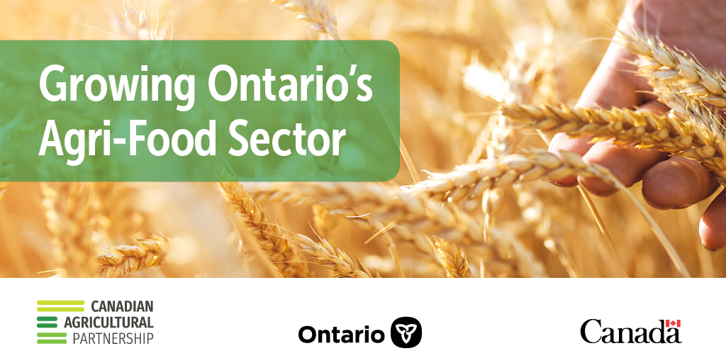 We're helping Ontario's farmers make their businesses stronger. More than $7.9 million in #CdnAgPartnership funding will support projects to boost productivity, expand markets and increase competitiveness. Find out more: https://t.co/VMdPMcofyC #OntAg #OpenForBusiness https://t.co/wxVOu3xuHy