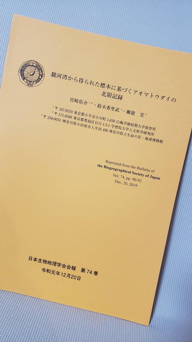 鈴木 カリブ 大学