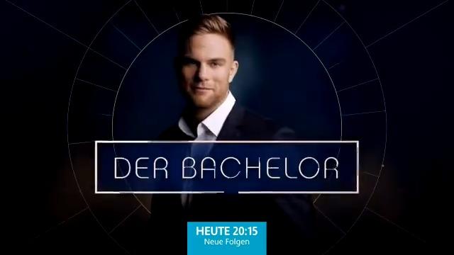 #bachelor