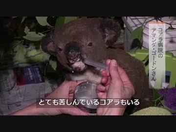 一般財団法人 日本ミスコン協会 公式さんの投稿画像