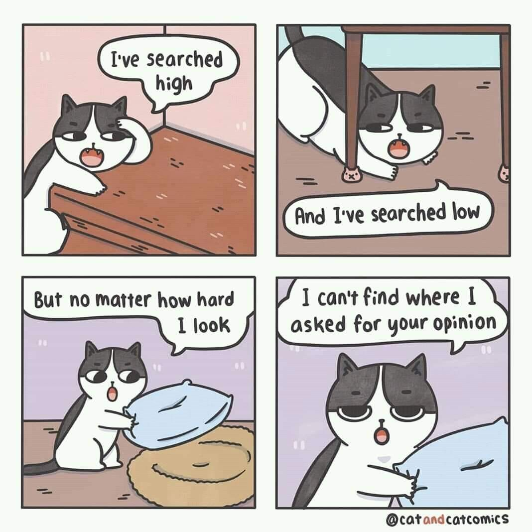 Four panel comic of a cat searching for a request for outside opinion, and failing to find it