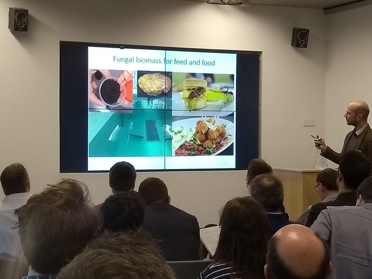 test Twitter Media - Jorge Ferreira, University of Boras, Sweden @hogskolaniboras, where the production of 'edible filamentous fungi from dairy sidestreams and expired products' has been a research theme. @newtrients_ucc @eriucc @EPAResearchNews https://t.co/EwdFOQcsnM