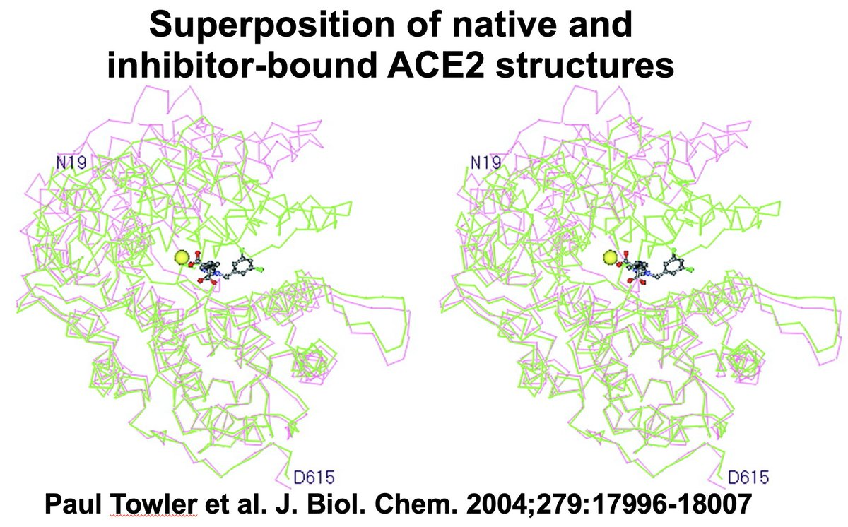 "Arie Hollander on Twitter: ""How about the paper from Ning Dong et all,  claiming only a weak binding of the s protein to the ACE2 ?  https://t.co/Ch41tB05mq… """