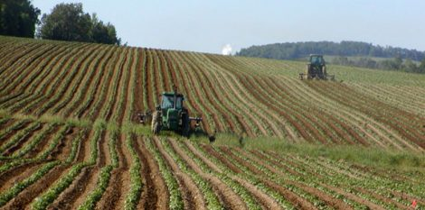Primato in positivo per la Sicilia, primi per numero aziende agricole condotte da giovani - https://t.co/OXs3MEhwoy #blogsicilianotizie