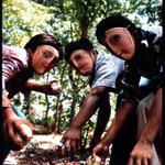 Image for the Tweet beginning: Rebels. Nicaragua. 1978The mind control
