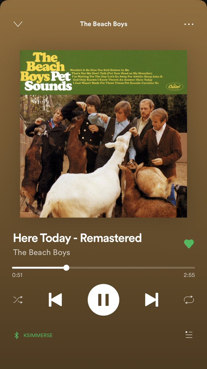 i think it's safe to say that #petsounds might be one of my all time favourite albums now. every time i listen to it it gets better and the vocal harmonies are literally heaven <br>http://pic.twitter.com/VSRdJXU2jN