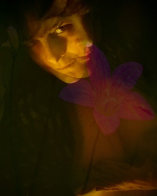 #wildflower #photography #lighting #TuesdayThoughts #overlays #abstractphotography #selfie