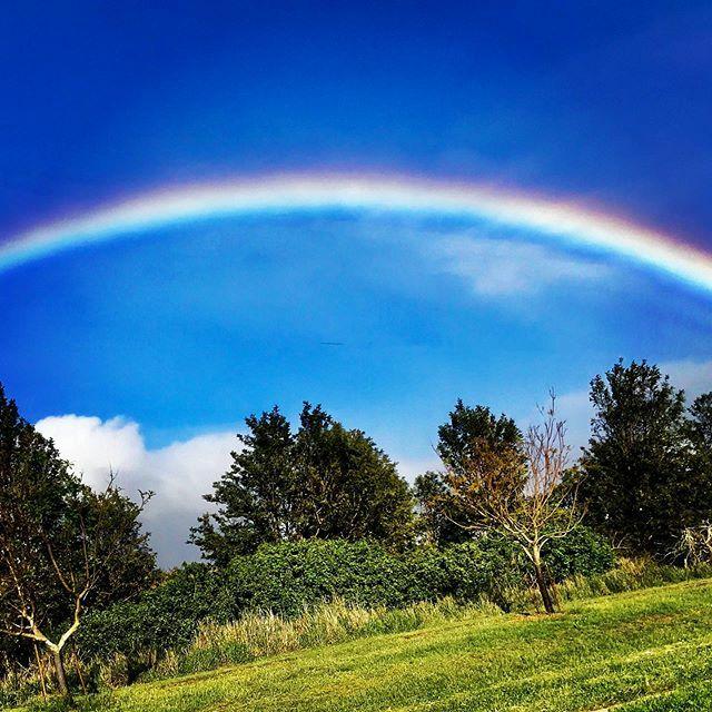 Be the rainbow in someone's cloudy day! . #hawaiistagram #mauihawaii #rainbow #happy #positivevibes #sharethelove #maketodaygreat #smile #adventuresinaubreyland