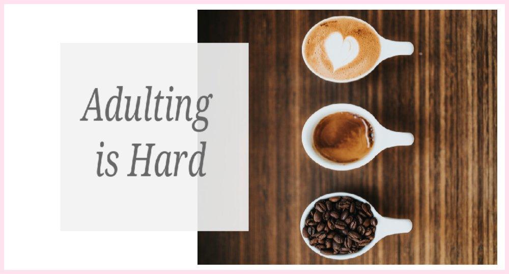 Adulting is HARD! http://bit.ly/2N1EqsU  #author #writer #creativehappylife #lifestyleblogger #fictionauthor #midlife #midlifelifestyle #midlifewomenpic.twitter.com/Qcw8xK9vam