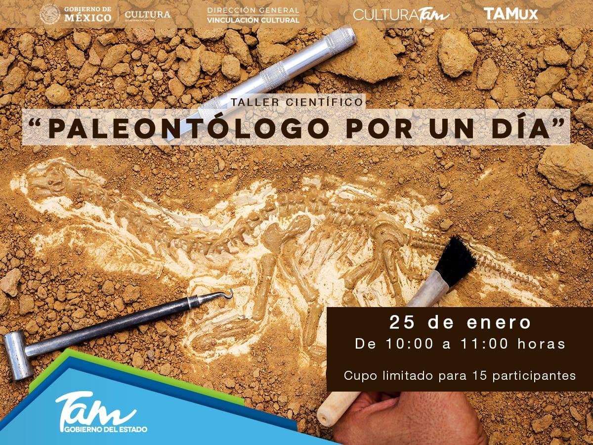 #CdVictoria¡Sé paleontólogo por un día! 🔎 Aprende sobre los especímenes de nuestra localidad y el proceso de extracción de material fósil. 📝 Inscripciones por mensaje de Facebook del @MuseoTAMux.