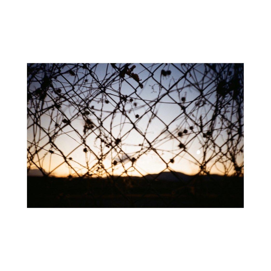 #lca #lomo #lomography #lomographyfilm #film #filmcamera #filmphotography #instagram #instagramjapan #tokyocameraclub #sky #skylovers #skyblue #bluesky #whiteclouds #solar #wind #light #shadows #myworld