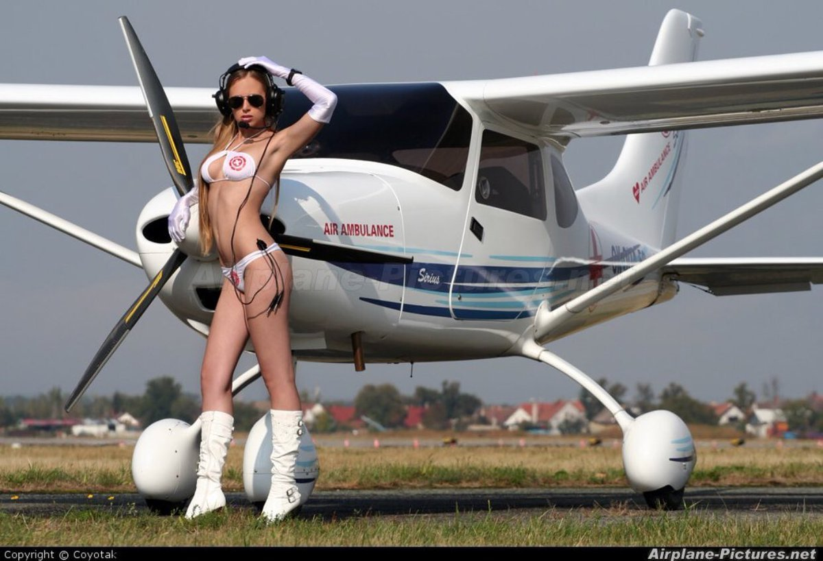 Gay Airplane Nude