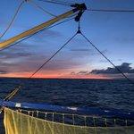 Image for the Tweet beginning: #Noordzee #visserij #kust  Goedemorgen ☕️☕️☕️☕️ Het