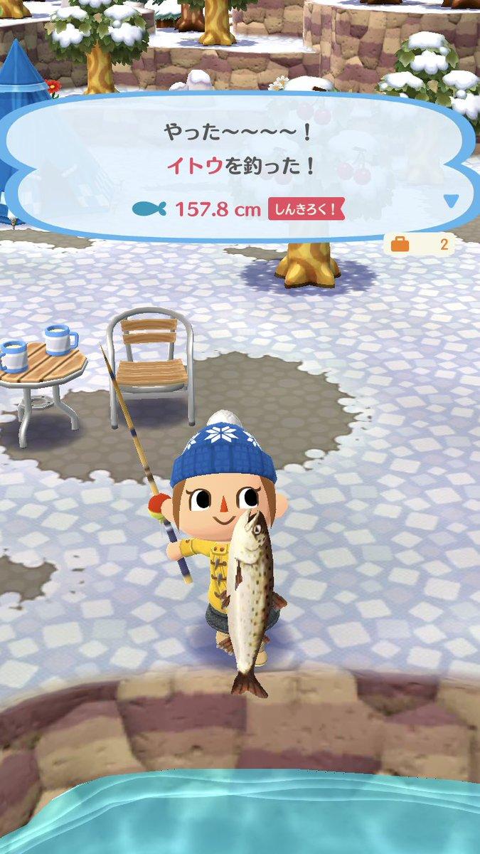 イトウ 釣れ ない