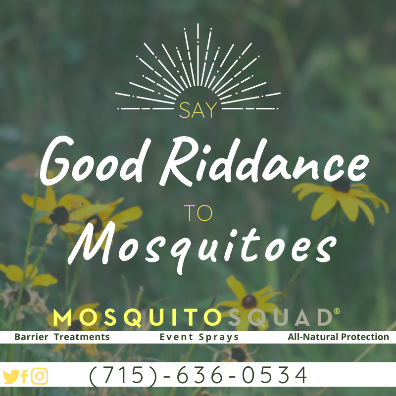 👋Say good riddance to pesky mosquitoes and ticks this #summer!👋 #MosquitoSquad of Northwest Wisconsin offers complete mosquito and tick control to keep you and your family safe all season long. Call or click now and schedule your customizable barrier treatment today! #biteback