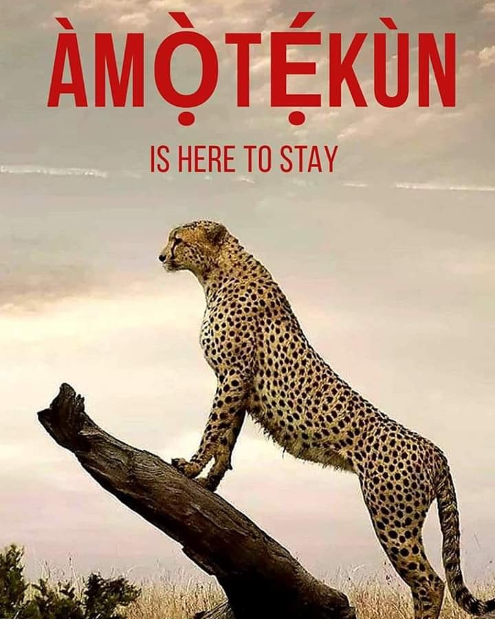Launched barely two weeks ago, AMOTEKUN has since become a super brand in Nigeria and beyond... The lesson in it is NEVER PUSH A PEOPLE TO THE WALL... Bi a ba ka eru, inu eru a baje!!! <br>http://pic.twitter.com/TFr94ocW8a