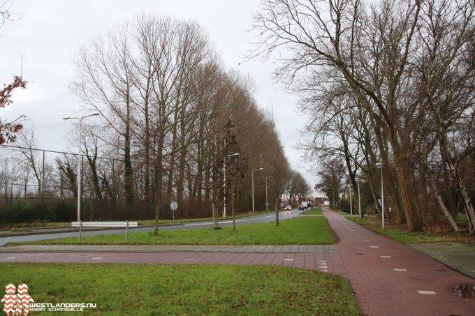 Tekst en uitleg omtrent kap 95 bomen bij Galgeweg https://t.co/xYQpYf0E0h https://t.co/uUQt4iwsIB