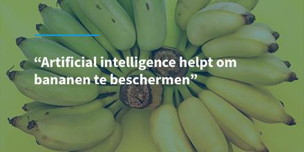 test Twitter Media - Een nieuwe smartphone app helpt bananentelers om hun planten te scannen op tekenen van vijf ziektes die voor kunnen komen bij bananen. Benieuwd hoe? Lees verder: https://t.co/VExDzlRNF0  #ai #artificialintelligence #centrumai https://t.co/S5GACTjDzq